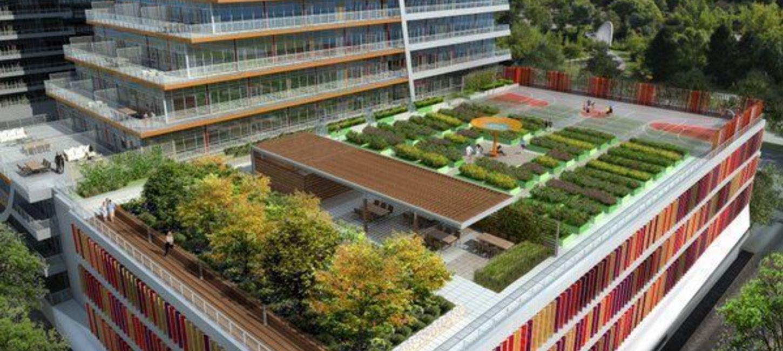 Hero slide community garden 090000 landscaped04