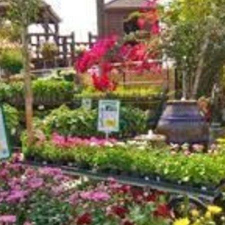 Card garden center